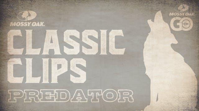 Classic Clips Predator