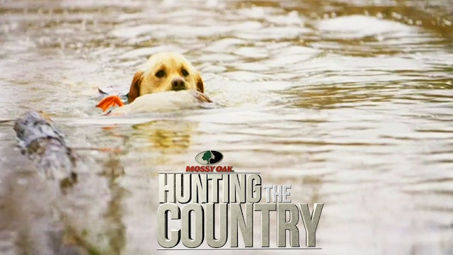 A Best Friend's Man • Gun Dogs and Waterfowl in Mississippi