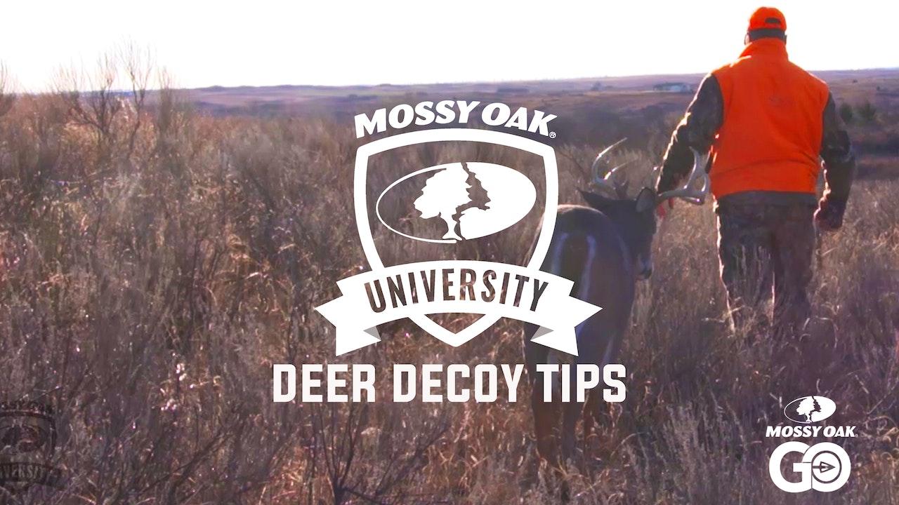 Deer Decoy Tips • Mossy Oak University