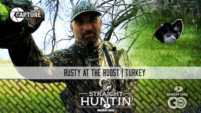 Rusty at the Roost • Rio Grande Hunting • Straight Huntin'