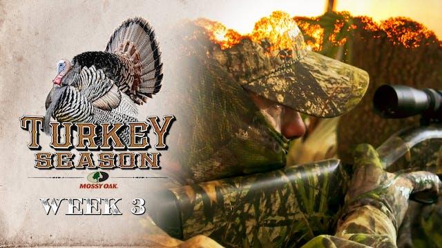 Live: 3.29.2021 Turkey Season Replay