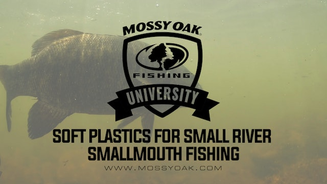 Soft Plastics For Small River Smallmouth Bass