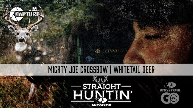 Mighty Joe Crossbow • Whitetail Deer • Straight Huntin'