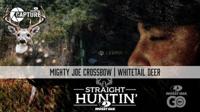 Mighty Joe Crossbow • Whitetail Deer ...