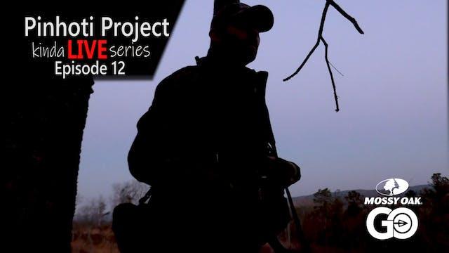 Kinda Live • Episode 12 • Pinhoti Pro...