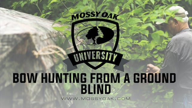 Bow Hunting From a Ground Blind