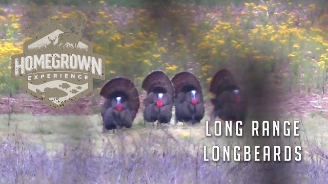 Homegrown Experience • Long Range Lon...