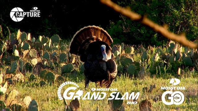 Grand Slam • Episode 8 • Rios