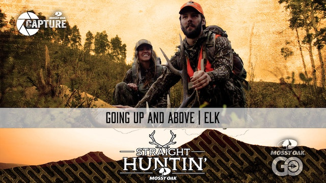 Going Up and Above • Colorado Elk • Straight Huntin'