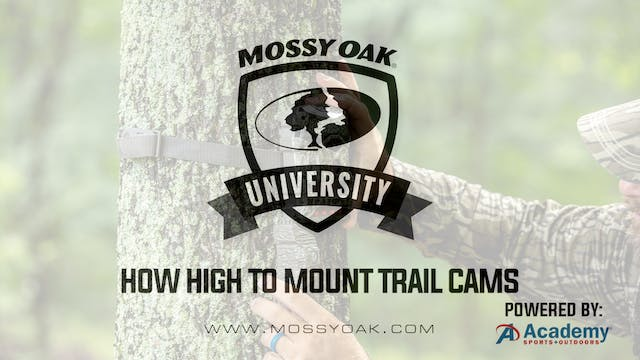 How High Or Low To Mount Trail Cams