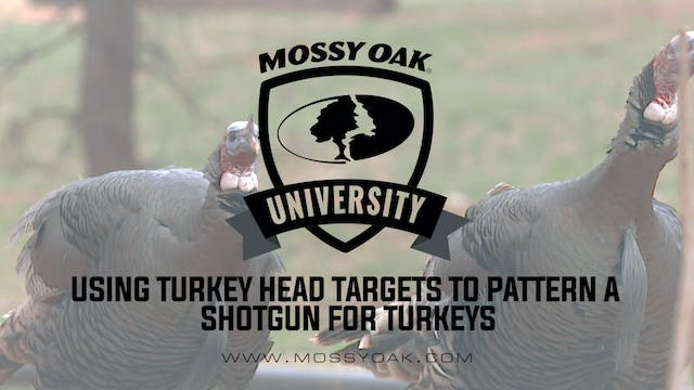 Using Turkey Head Targets to Pattern ...