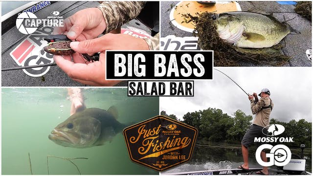 Big Bass Salad Bar • Just Fishing wit...