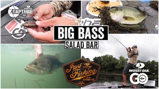 Big Bass Salad Bar • Just Fishing wit...