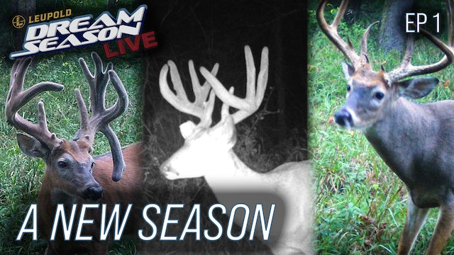 A New Season With New Targets, Closing In On Opening Day • Dream Season Live