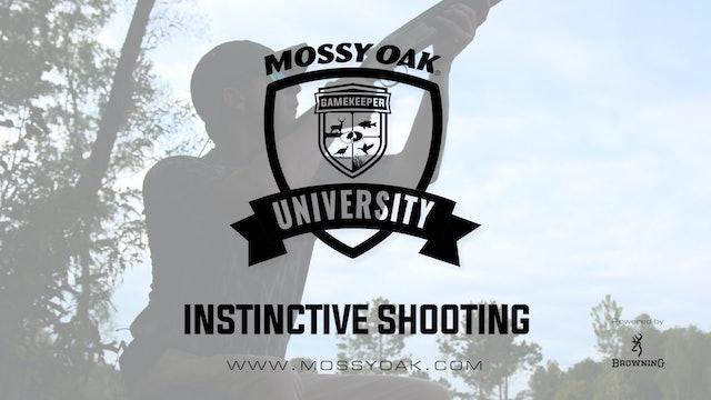 Instictive Shooting