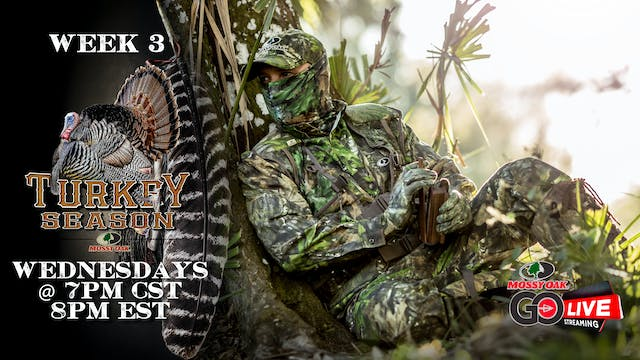 LIVE: 3.11.2020 Turkey Season Replay