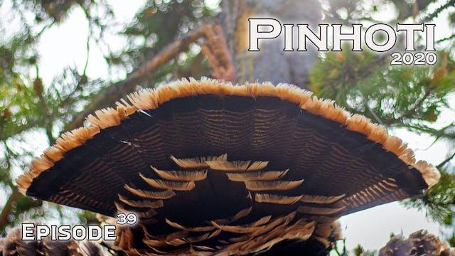 Pinhoti 2020 Ep 39 • Pinhoti Project