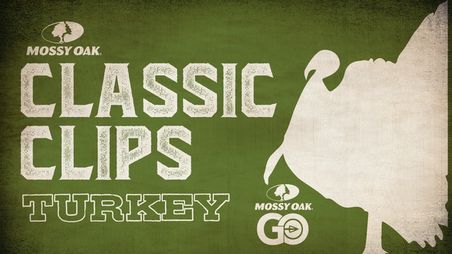Classic Clips Turkey