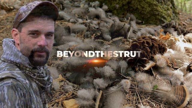 California • Beyond the Strut
