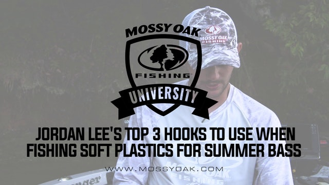 Top 3 Hooks To Use When Fishing Soft Plastics