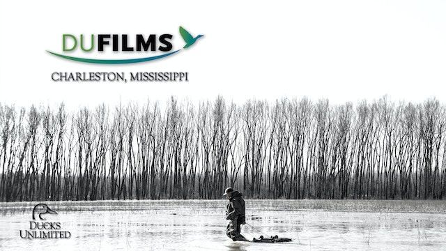 Charleston, Mississippi • DU Films