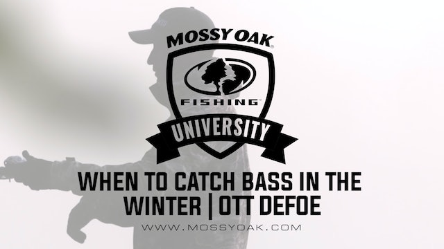 When to Catch Bass in the Winter - Ott DeFoe Fishing Tips