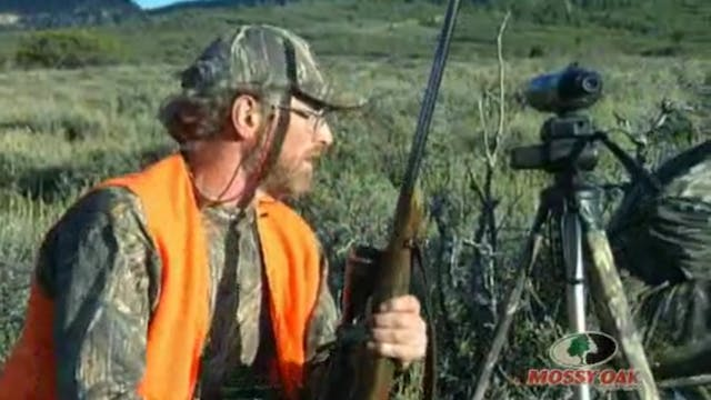 Utah Mulies • Hunts for Mule Deer in ...