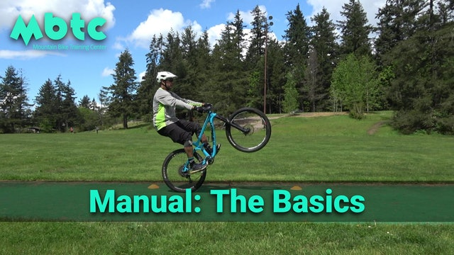 Manual: The Basics