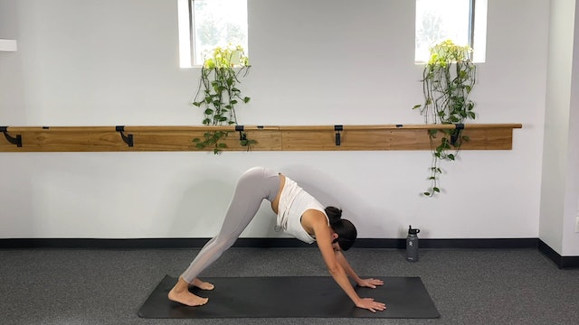 Yoga (09/11/20) with Annalee