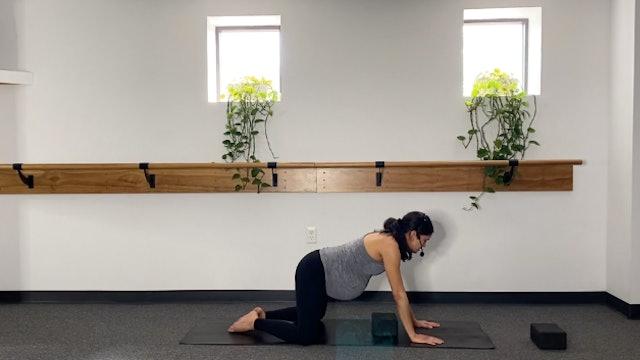 Prenatal Yoga (3/20/20) with Annalee