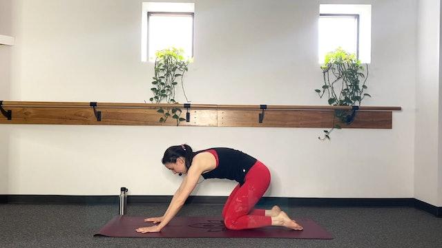 Yoga (3/20/20) with Erika