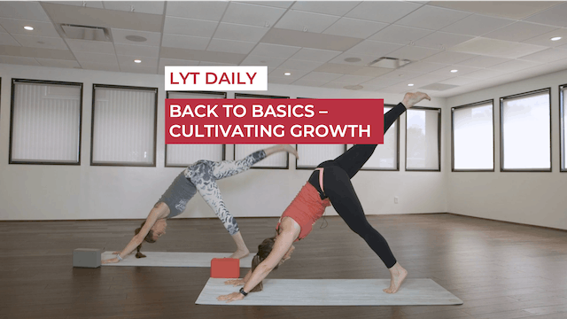 BACK TO BASICS - CULTIVATING GROWTH