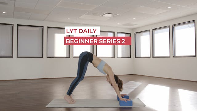 LYT BEGINNER SERIES 2