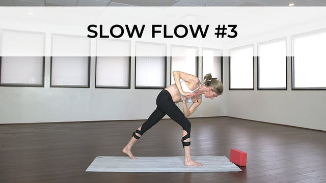 SLOW FLOW #3