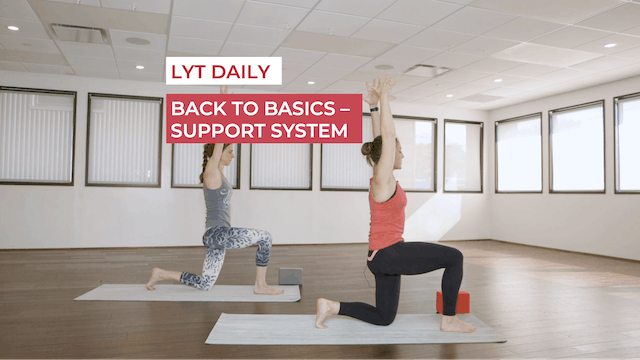 BACK TO BASICS - SUPPORT SYSTEM