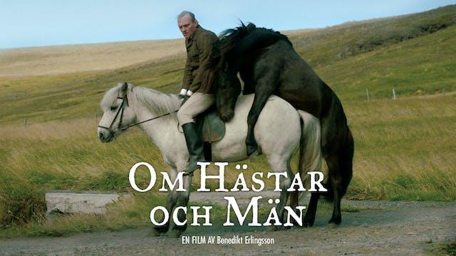 Om Hästar och Män