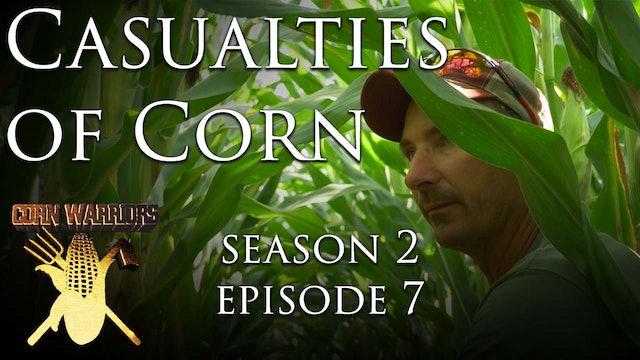 Casualties of Corn