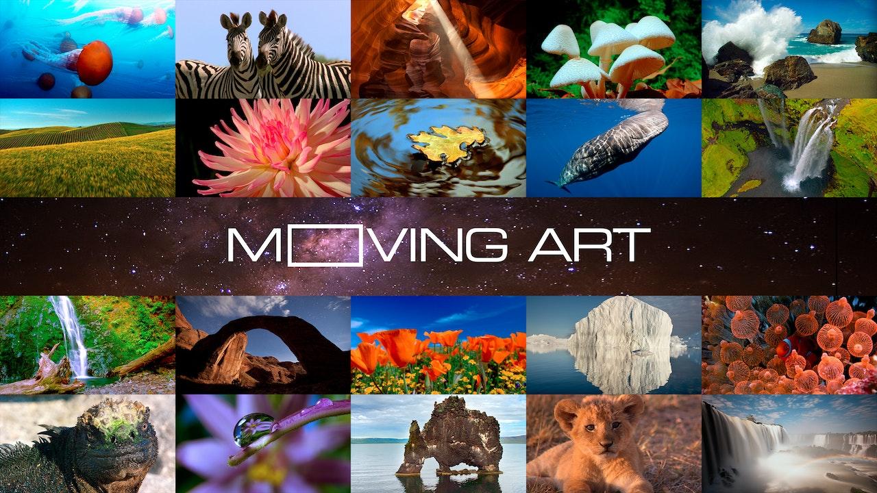 Moving Art: Volume 1