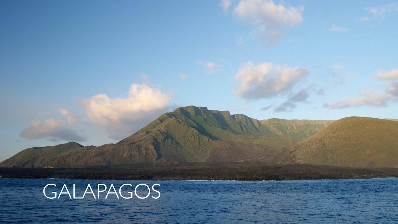 Moving Art: Season 2: Galapagos