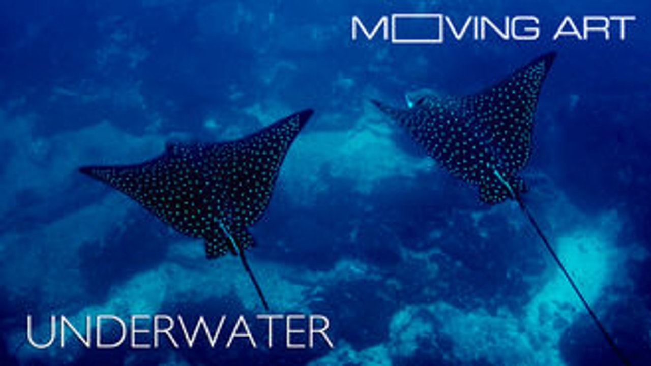 Moving Art: Season 1: Underwater