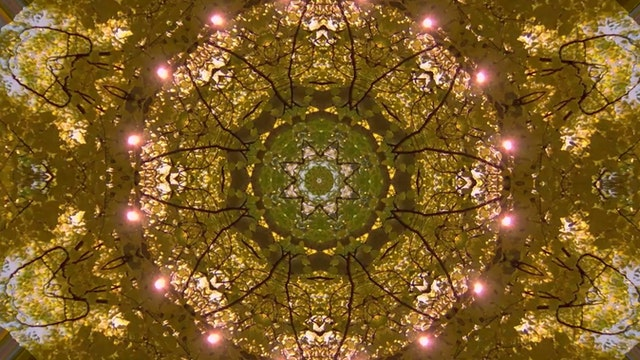 Fall Mandala