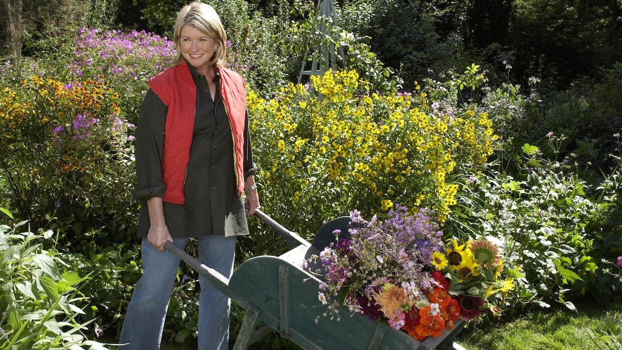 Gardening: Get Growing!