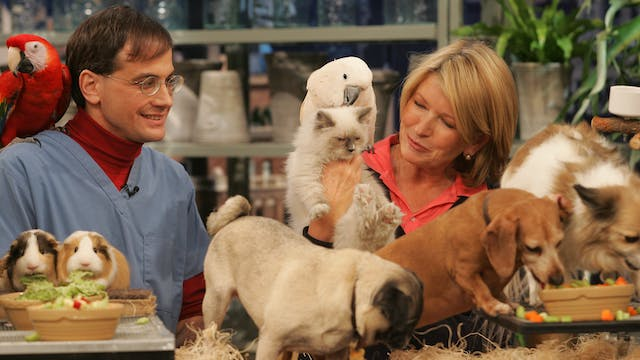 MSS3 E137 The Best of Pets with Marc ...
