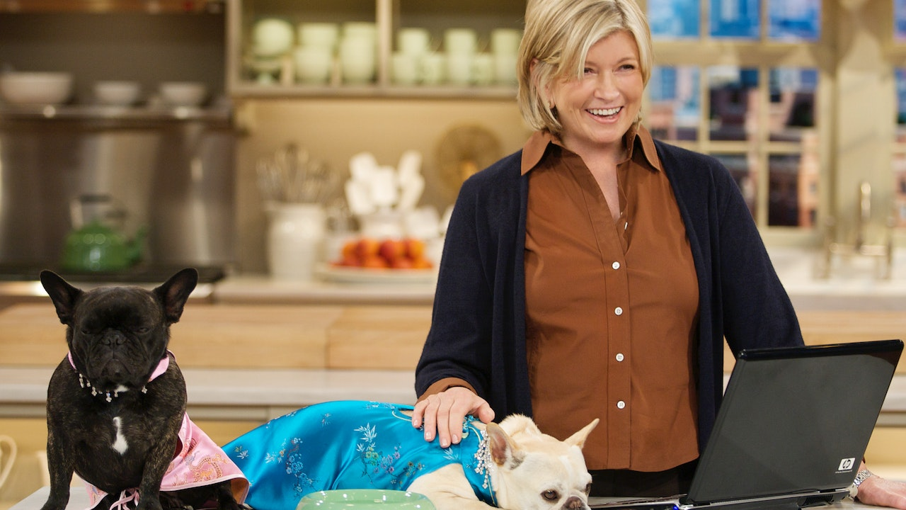Creature Comforts: Learn How to Keep Your Furry Family Happy and Safe