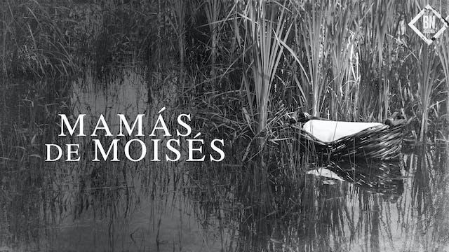 Mamás de Moisés (Official video)