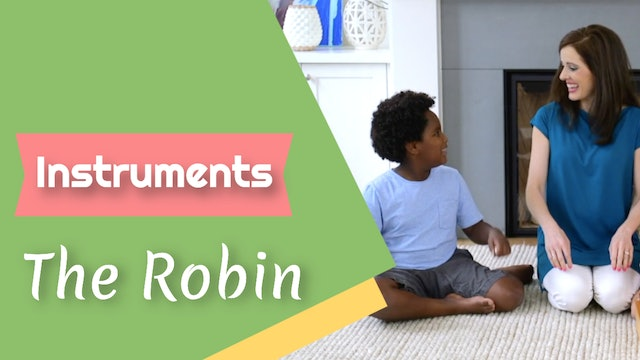 The Robin- Instruments