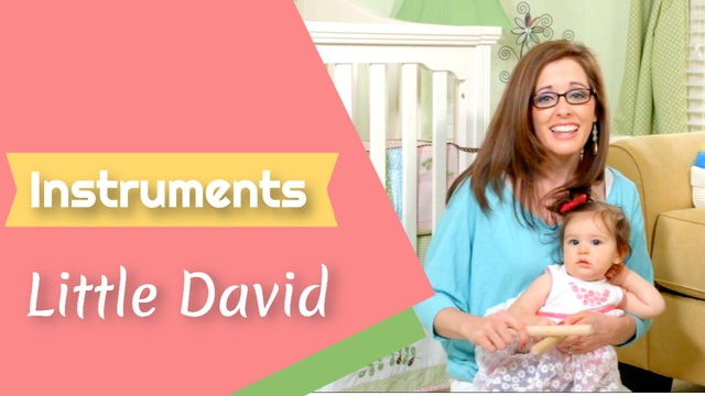 Little David- Instruments