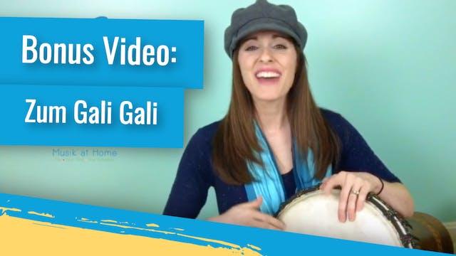 Bonus Video: Zum Gali Gali (The Worki...