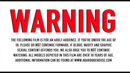 Midnight Movie Society Video