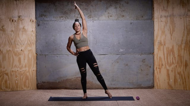 Barre (Core) with KJ | 30 minutes